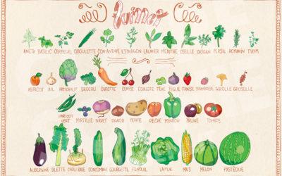 Fruits et légumes du mois de juillet 🌽