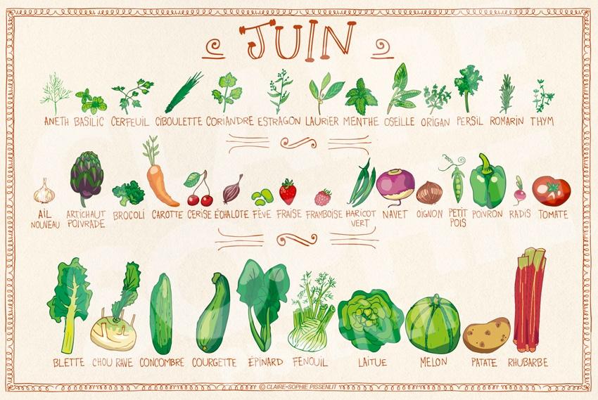 Fruits et légumes du mois de juin 🍒