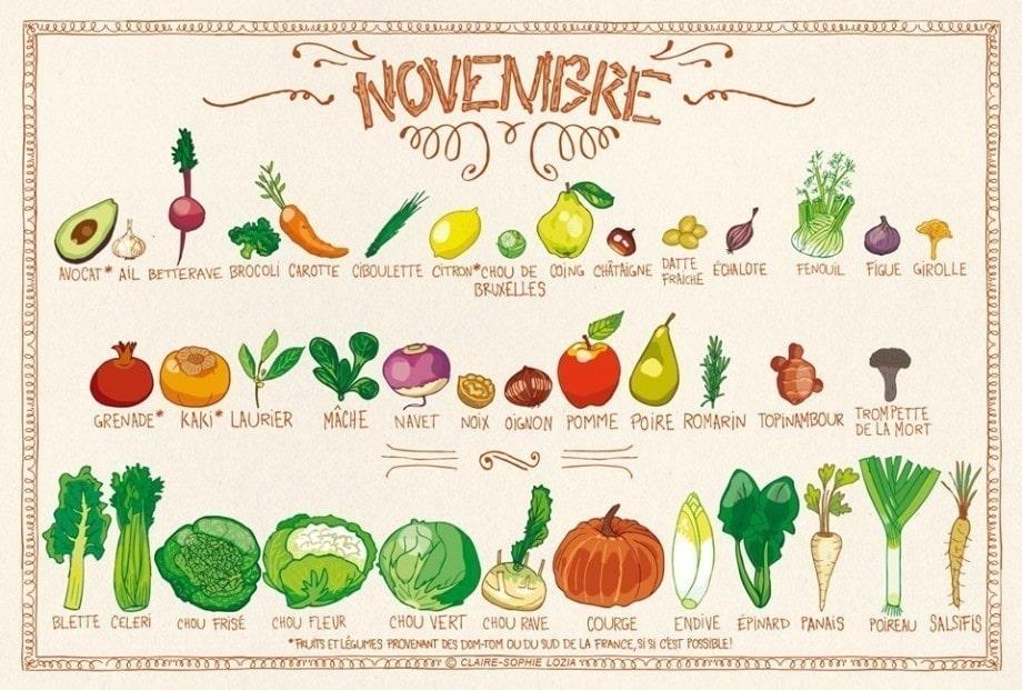 Fruits et légumes du mois de novembre 🥑